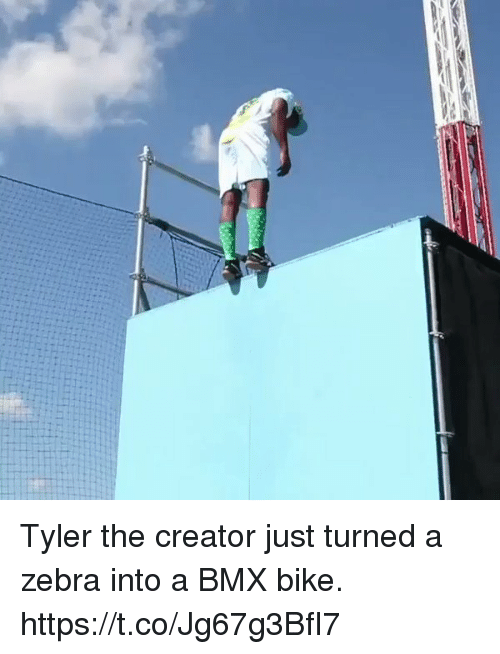 Blackpeopletwitter, Tyler the Creator, and Bmx: Tyler the creator just turned a zebra into a BMX bike. https://t.co/Jg67g3BfI7