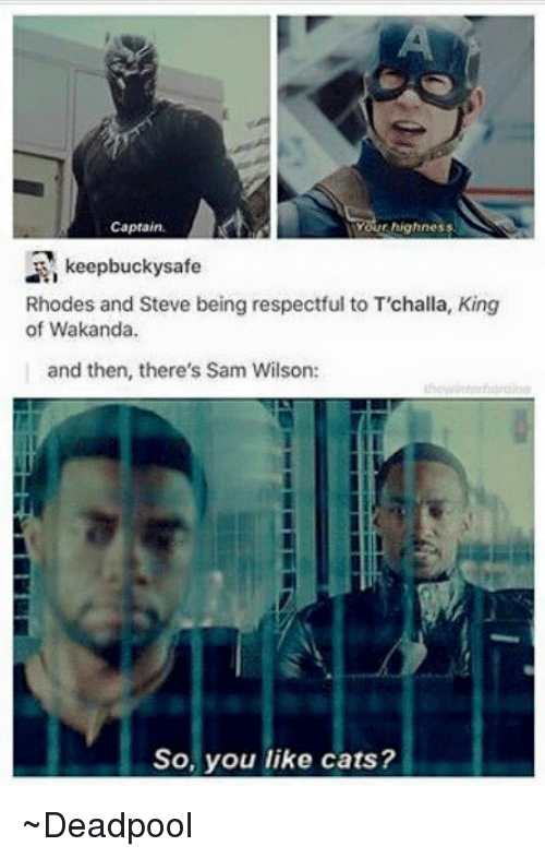 Avengers: TYour highness  Captain  R keepbuckysafe  Rhodes and Steve being respectful to Trchalla, King  of Wakanda.  and then, there's Sam Wilson:  So, you like cats? ~Deadpool