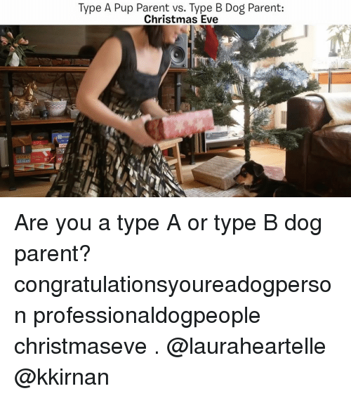Memes, Pup, and 🤖: Type A Pup Parent vs. Type B Dog Parent:  Christmas Eve Are you a type A or type B dog parent? congratulationsyoureadogperson professionaldogpeople christmaseve . @lauraheartelle @kkirnan