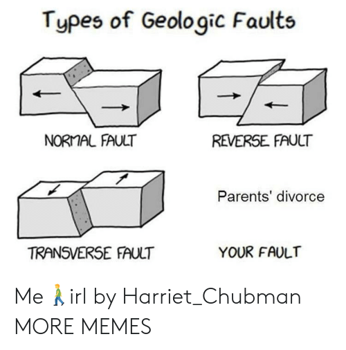 Divorce: Types of Geologic Faults  NORMAL FAULT  REVERSE FAULT  Parents' divorce  TRANSVERSE FAULT  YOUR FAULT Me🚶‍♂️irl by Harriet_Chubman MORE MEMES
