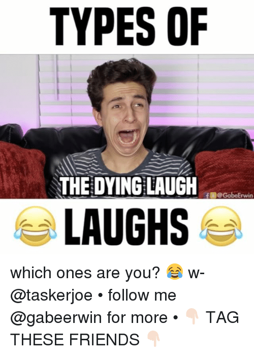 erwin: TYPES OF  THE DYING LAUGH  f eGobe Erwin  LAUGHS which ones are you? 😂 w- @taskerjoe • follow me @gabeerwin for more • 👇🏻 TAG THESE FRIENDS 👇🏻