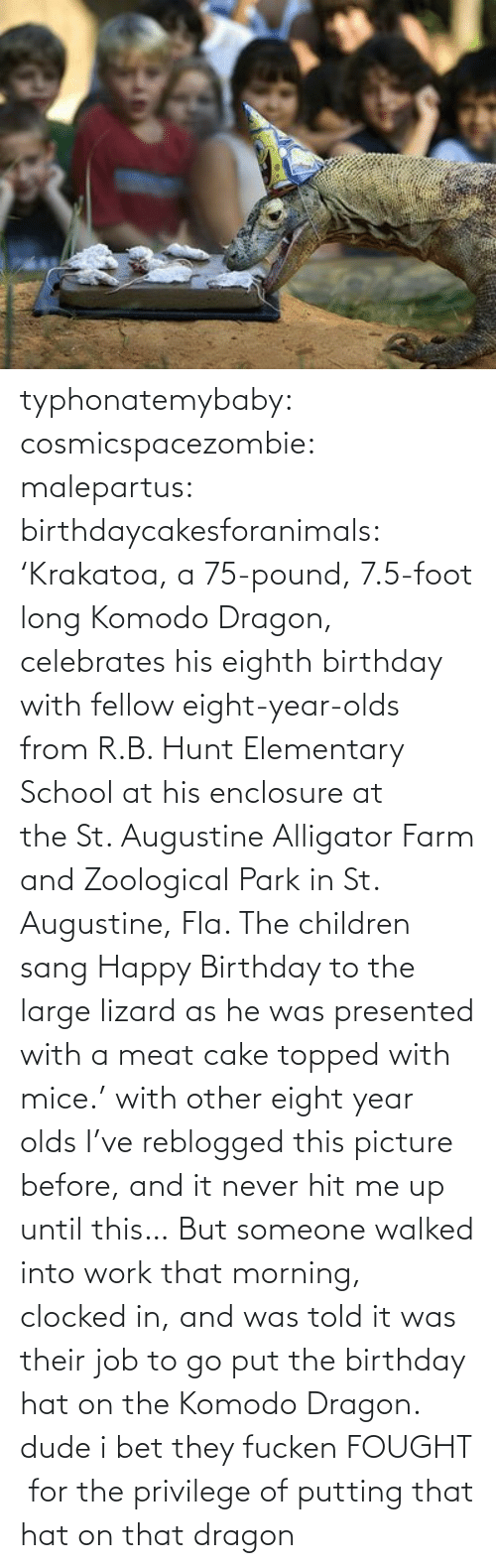 krakatoa: typhonatemybaby:  cosmicspacezombie:  malepartus:  birthdaycakesforanimals:  'Krakatoa, a 75-pound, 7.5-foot long Komodo Dragon, celebrates his eighth birthday with fellow eight-year-olds from R.B. Hunt Elementary School at his enclosure at the St. Augustine Alligator Farm and Zoological Park in St. Augustine, Fla. The children sang Happy Birthday to the large lizard as he was presented with a meat cake topped with mice.'  with other eight year olds  I've reblogged this picture before, and it never hit me up until this… But someone walked into work that morning, clocked in, and was told it was their job to go put the birthday hat on the Komodo Dragon.  dude i bet they fucken FOUGHT  for the privilege of putting that hat on that dragon
