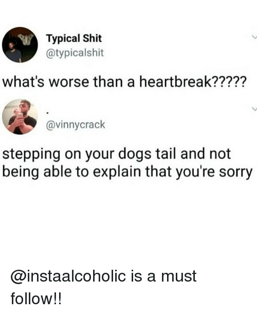 Dogs, Memes, and Shit: Typical Shit  @typicalshit  what's worse than a heartbreak?????  @vinnycrack  stepping on your dogs tail and not  being able to explain that you're sorry @instaalcoholic is a must follow!!