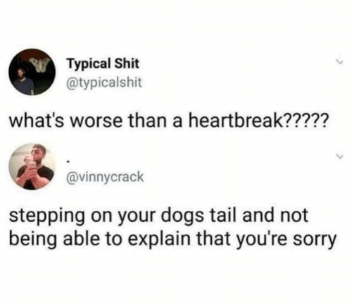 Stepping: Typical Shit  @typicalshit  what's worse than a heartbreak?????  @vinnycrack  stepping on your dogs tail and not  being able to explain that you're sorry