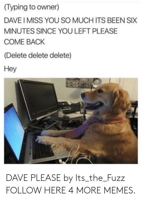 i miss you so much: (Typing to owner)  DAVE I MISS YOU SO MUCH ITS BEEN SIX  MINUTES SINCE YOU LEFT PLEASE  COME BACK  (Delete delete delete)  Hey DAVE PLEASE by Its_the_Fuzz FOLLOW HERE 4 MORE MEMES.