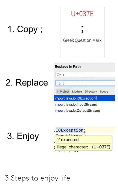 scope: U+037E  1. Copy  Greek Question Mark  Replace in Path  2. Replace C  In Project Module Directory Scope  import java.io.IOException  import java.io.InputStream;  import java.io.OutputStream;  .IOException  nio  ;' expected  t llegal character: ; (U+037E) 3 Steps to enjoy life