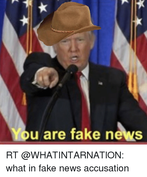 Memes, 🤖, and Fakings: u are fake news RT @WHATINTARNATlON: what in fake news accusation