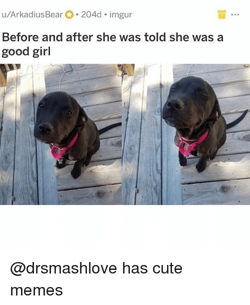 Cute, Funny, and Memes: u/ArkadiusBear 204d imgur  Before and after she was told she was a  good girl @drsmashlove has cute memes