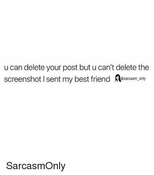 Best Friend, Funny, and Memes: u can delete your post but u can't delete the  screenshot I sent my best friend srcaam,.ony SarcasmOnly