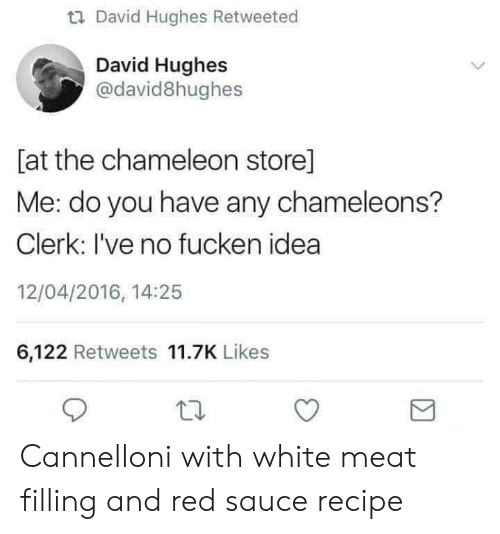 Chameleon: u David Hughes Retweeted  David Hughes  @david8hughes  [at the chameleon store]  Me: do you have any chameleons?  Clerk: I've no fucken idea  12/04/2016, 14:25  6,122 Retweets 11.7K Likes Cannelloni with white meat filling and red saucerecipe