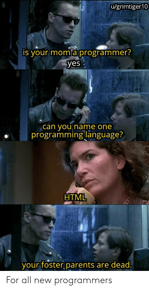 yes-you: u/grimtiger10  is your moma programmer?  yes  you  programming language?  can  Iname one  HTML  your foster parents  are dead. For all new programmers