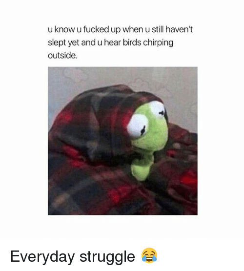 Funny, Struggle, and Birds: u know u fucked up when u still haven't  slept yet and u hear birds chirping  outside. Everyday struggle 😂