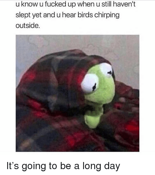 Memes, Birds, and 🤖: u know u fucked up when u still haven't  slept yet and u hear birds chirping  outside. It's going to be a long day