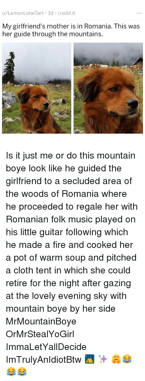 Fire, Memes, and Music: u/LemonLime Tart ld i.redd.it  My girlfriend's mother is in Romania. This was  her guide through the mountains. Is it just me or do this mountain boye look like he guided the girlfriend to a secluded area of the woods of Romania where he proceeded to regale her with Romanian folk music played on his little guitar following which he made a fire and cooked her a pot of warm soup and pitched a cloth tent in which she could retire for the night after gazing at the lovely evening sky with mountain boye by her side MrMountainBoye OrMrStealYoGirl ImmaLetYallDecide ImTrulyAnIdiotBtw ⛺️ ✨ 🤗😂😂😂