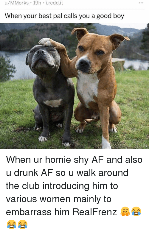 Af, Club, and Drunk: u/MMorks 19h i.redd.it  When your best pal callS you a good boy When ur homie shy AF and also u drunk AF so u walk around the club introducing him to various women mainly to embarrass him RealFrenz 🤗😂😂😂