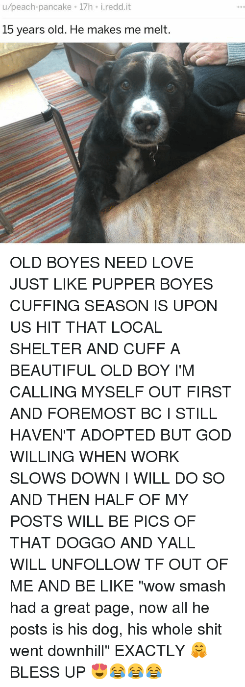 "wows: u/peach-pancake 17h i.redd.it  15 years old. He makes me melt. OLD BOYES NEED LOVE JUST LIKE PUPPER BOYES CUFFING SEASON IS UPON US HIT THAT LOCAL SHELTER AND CUFF A BEAUTIFUL OLD BOY I'M CALLING MYSELF OUT FIRST AND FOREMOST BC I STILL HAVEN'T ADOPTED BUT GOD WILLING WHEN WORK SLOWS DOWN I WILL DO SO AND THEN HALF OF MY POSTS WILL BE PICS OF THAT DOGGO AND YALL WILL UNFOLLOW TF OUT OF ME AND BE LIKE ""wow smash had a great page, now all he posts is his dog, his whole shit went downhill"" EXACTLY 🤗 BLESS UP 😍😂😂😂"