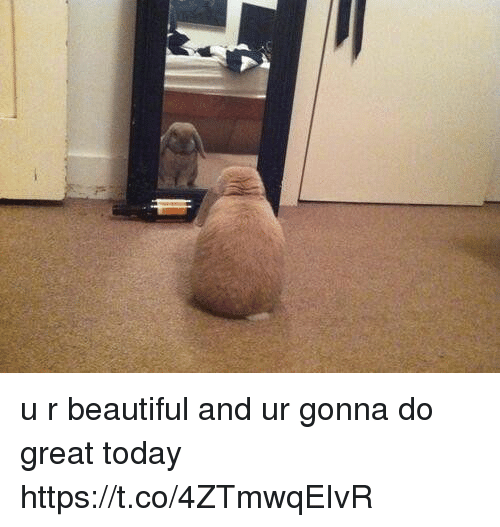 Where Is The Co U R: U R Beautiful And Ur Gonna Do Great Today