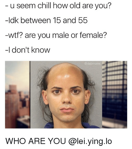 Chill, Memes, and Wtf: u seem chill how old are you?  -Idk between 15 and 55  wtf? are you male or female?  -I don't know  dabmoms. WHO ARE YOU @lei.ying.lo