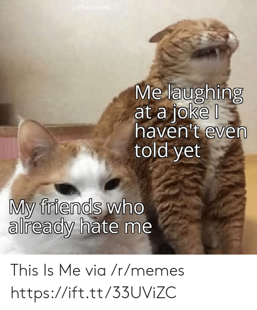 Hate Me: u/TheUseleb  Me laughing  at a joke  haven't even  told yet  My friends who  already hate me This Is Me via /r/memes https://ift.tt/33UViZC
