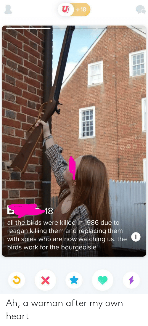 reagan: U18  18  all the birds were killed in 1986 due to  reagan killing them and replacing them  with spies who are now watching us. the  birds work for the bourgeoisie  i  x Ah, a woman after my own heart