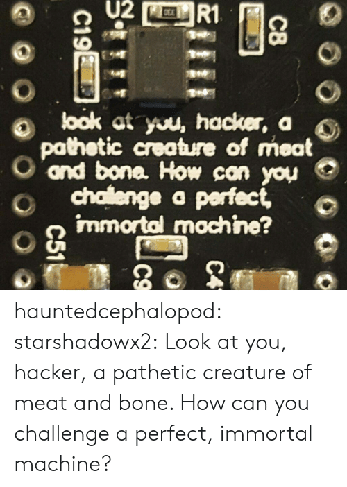 look at you: U2  R1  look at you, hacker, a  pathetic creature of meat  ond bone. How can you  chalenge a perfect,  immortal mochine?  C8  C4  C19E  C51 hauntedcephalopod:  starshadowx2: Look at you, hacker, a pathetic creature of meat and bone. How can you challenge a perfect, immortal machine?