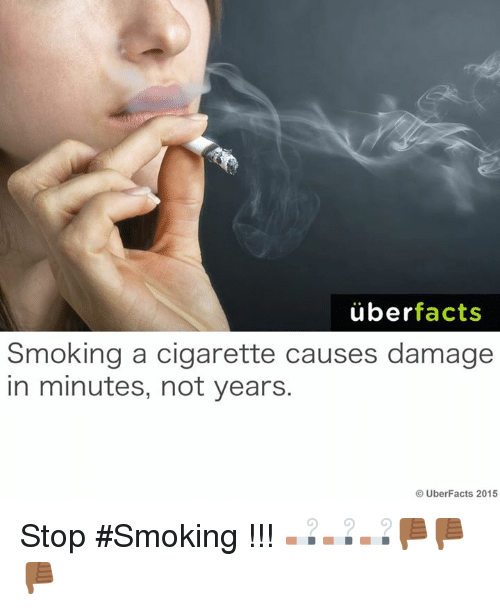 Facts, Memes, and Smoking: uber  facts  Smoking a cigarette causes damage  in minutes, not years.  Uber Facts 2015 Stop #Smoking !!! 🚬🚬🚬👎🏾👎🏾👎🏾