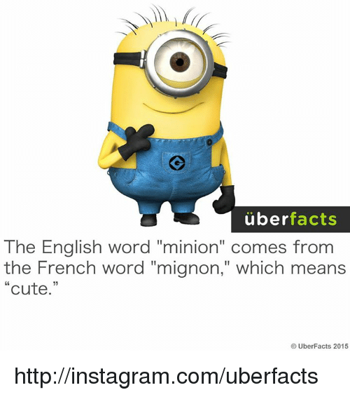 """Uber Facts: uber  facts  The English word """"minion"""" comes from  the French word """"mignon,"""" which means  Cute  UberFacts 2015 http://instagram.com/uberfacts"""