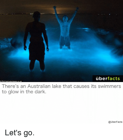 glow: uber  facts  There's an Australian lake that causes its swimmers  to glow in the dark.  @UberFacts Let's go.