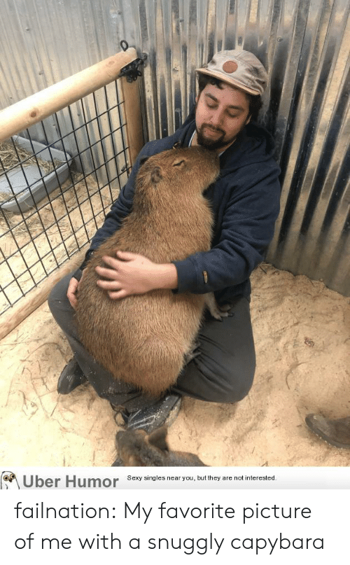 Singles: Uber Humor  Sexy singles near you, but they are not interested. failnation:  My favorite picture of me with a snuggly capybara