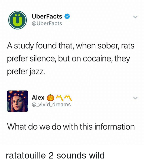 Ratatouille, Cocaine, and Information: UberFacts  @UberFacts  A study found that, when sober, rats  prefer silence, but on cocaine, they  prefer jazz.  Alex  @ vivid dreams  What do we do with this information ratatouille 2 sounds wild
