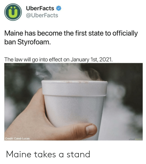 Maine: UberFacts  @UberFacts  Maine has become the first state to officially  ban Styrofoam  The law will go into effect on January 1st, 2021  überfacts  Credit: Caleb Lucas Maine takes a stand