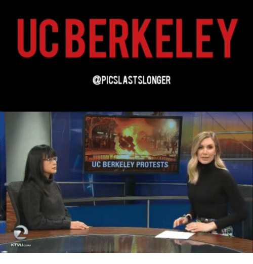Memes, UC Berkeley, and 🤖: UC BERKELEY  @PICSLASTSLONGER  UC BERKELEY PROTESTS