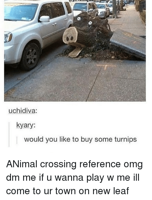 new leaf: uchidiva:  kyary:  would you like to buy some turnips ANimal crossing reference omg dm me if u wanna play w me ill come to ur town on new leaf