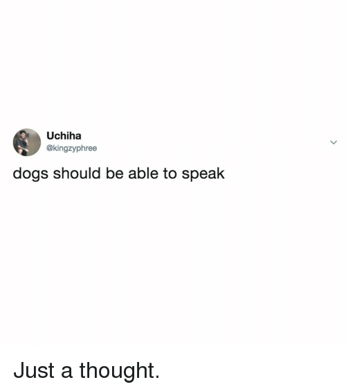 Uchiha: Uchiha  @kingzyphree  dogs should be able to speak Just a thought.