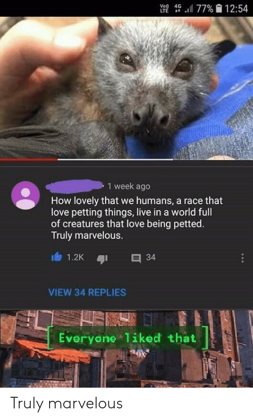 Marvelous: UE 4, .11 77%  12:54  1 week ageo  How lovely that we humans, a race that  love petting things, live in a world full  of creatures that love being petted.  Truly marvelous.  VIEW 34 REPLIES  Everyone liked that Truly marvelous