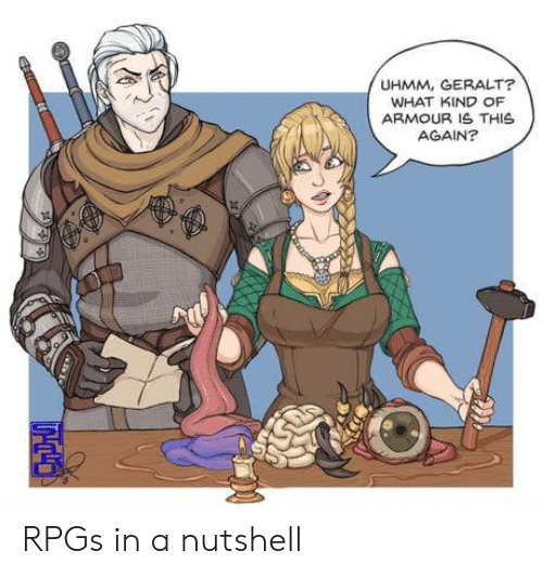 rpg: UHMM, GERALT?  WHAT KIND OF  ARMOUR IS THIS  AGAIN? RPGs in a nutshell