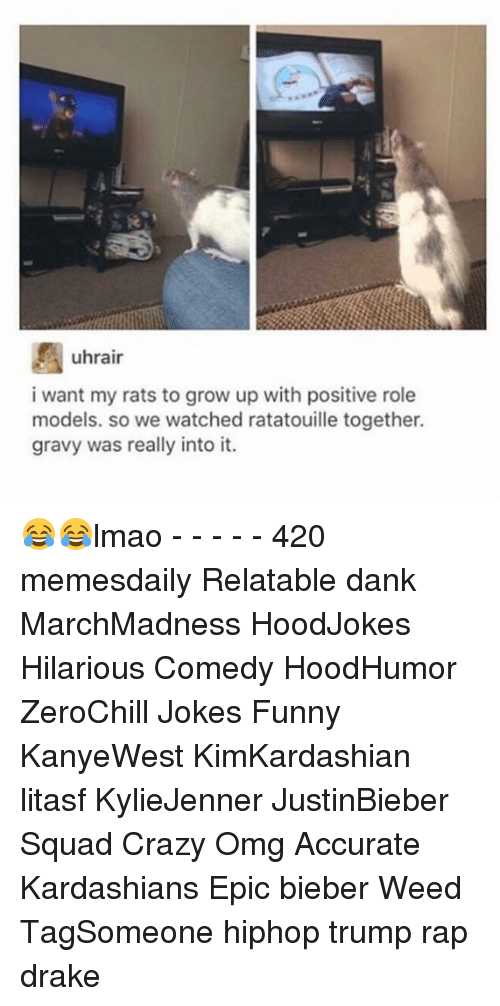 Drake, Growing Up, and Memes: uhrair  i want my rats to grow up with positive role  models. so we watched ratatouille together.  gravy was really into it. 😂😂lmao - - - - - 420 memesdaily Relatable dank MarchMadness HoodJokes Hilarious Comedy HoodHumor ZeroChill Jokes Funny KanyeWest KimKardashian litasf KylieJenner JustinBieber Squad Crazy Omg Accurate Kardashians Epic bieber Weed TagSomeone hiphop trump rap drake
