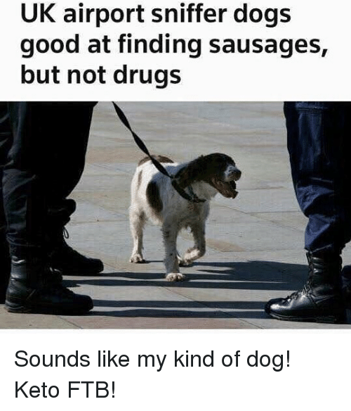 Keto: UK airport sniffer dogs  good at finding sausages,  but not drugs Sounds like my kind of dog! Keto FTB!