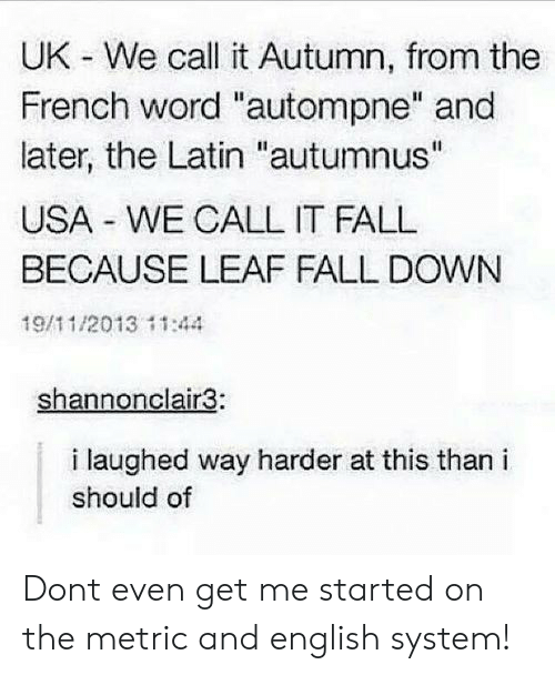 """fall down: UK - We call it Autumn, from the  French word """"autompne"""" and  later, the Latin """"autumnus""""  USA WE CALL IT FALL  BECAUSE LEAF FALL DOWN  19/11/2013 11:44  shannonclair3:  i laughed way harder at this than i  should of Dont even get me started on the metric and english system!"""