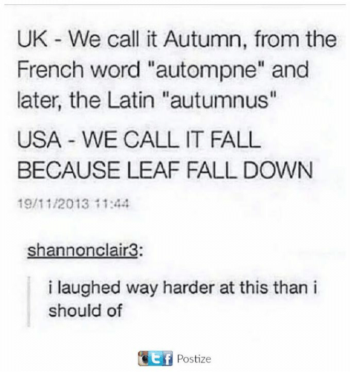 """Its Fall: UK We call it Autumn, from the  French word """"autompne"""" and  later, the Latin """"autumnus""""  USA WE CALL IT FALL  BECAUSE LEAF FALL DOWN  19/11/2013 11:44  Shannonclair3:  i laughed way harder at this than i  should of  t f  Postize"""