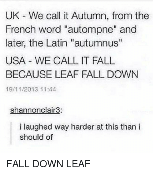 """Fall, Memes, and Word: UK We call it Autumn, from the  French word """"autompne"""" and  later, the Latin """"autumnus""""  USA WE CALL IT FALL  BECAUSE LEAF FALL DOWN  19/11/2013 11:44  shannonclair3:  i laughed way harder at this than i  should of FALL DOWN LEAF"""