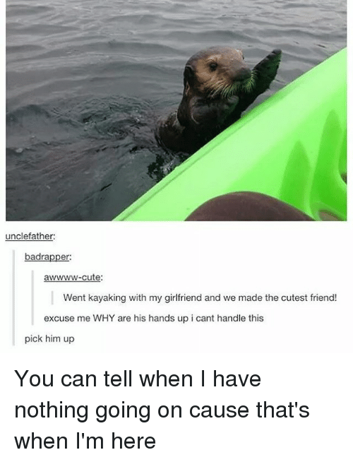 Cant Handle This: unclefather:  badra  er  awwww-cute:  Went kayaking with my girlfriend and we made the cutest friend!  excuse me WHY are his hands up i cant handle this  pick him up You can tell when I have nothing going on cause that's when I'm here