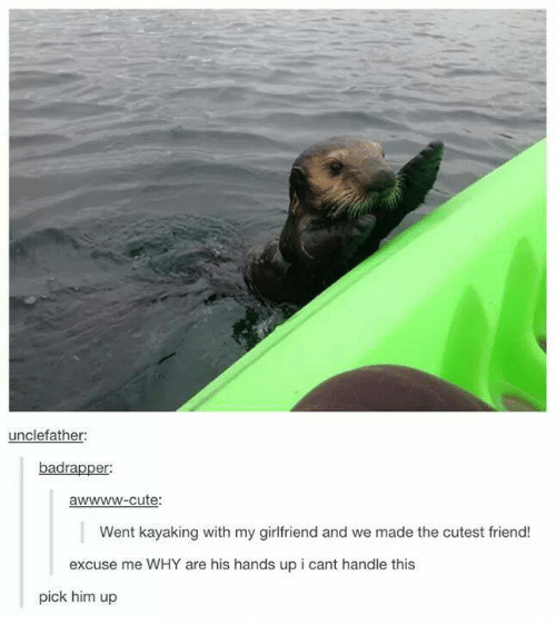 Cant Handle This: unclefather  er.  awwww-cute:  Went kayaking with my girlfriend and we made the cutest friend!  excuse me WHY are his hands up i cant handle this  pick him up