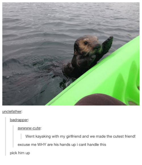 Cute, Girlfriend, and Humans of Tumblr: unclefather  er:  awwww-cute  Went kayaking with my girlfriend and we made the cutest friend!  excuse me WHY are his hands up i cant handle this  pick him up