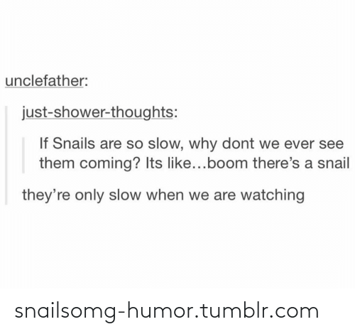 Shower thoughts: unclefather:  just-shower-thoughts:  If Snails are so slow, why dont we ever see  them coming? Its like...boom there's a snail  they're only slow when we are watching snailsomg-humor.tumblr.com