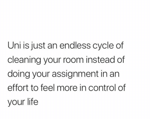 Life, Control, and Uni: Uni is just an endless cycle of  cleaning your room instead of  doing your assignment in an  effort to feel more in control of  your life
