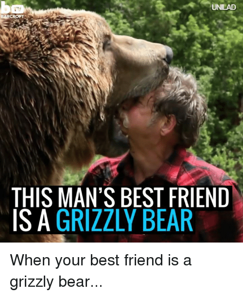 Best Friend, Dank, and Friends: UNILAD  BARCROFTS  THIS MAN'S BEST FRIEND  IS A  GRIZZLY BEAR When your best friend is a grizzly bear...