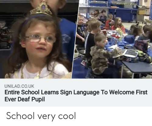 Pupil: UNILAD.CO.UK  Entire School Learns Sign Language To Welcome First  Ever Deaf Pupil School very cool