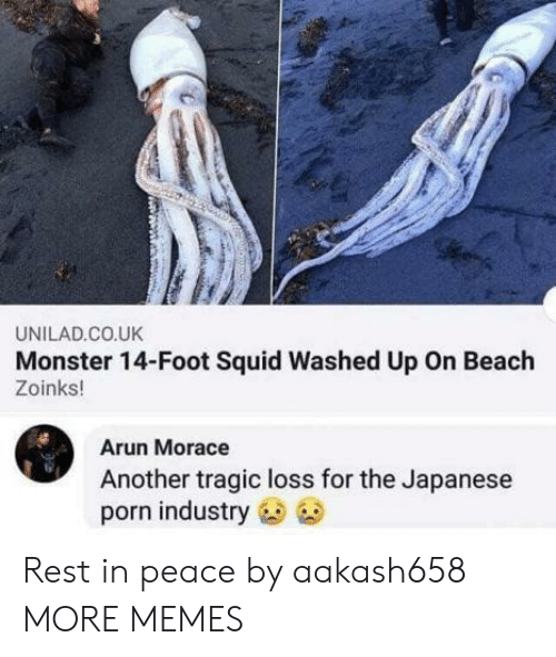 Zoinks: UNILAD.CO.UK  Monster 14-Foot Squid Washed Up On Beach  Zoinks!  Arun Morace  Another tragic loss for the Japanese  porn industry Rest in peace by aakash658 MORE MEMES
