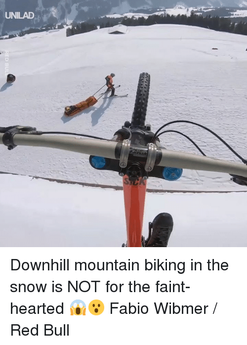 Fabio: UNILAD Downhill mountain biking in the snow is NOT for the faint-hearted 😱😮  Fabio Wibmer / Red Bull